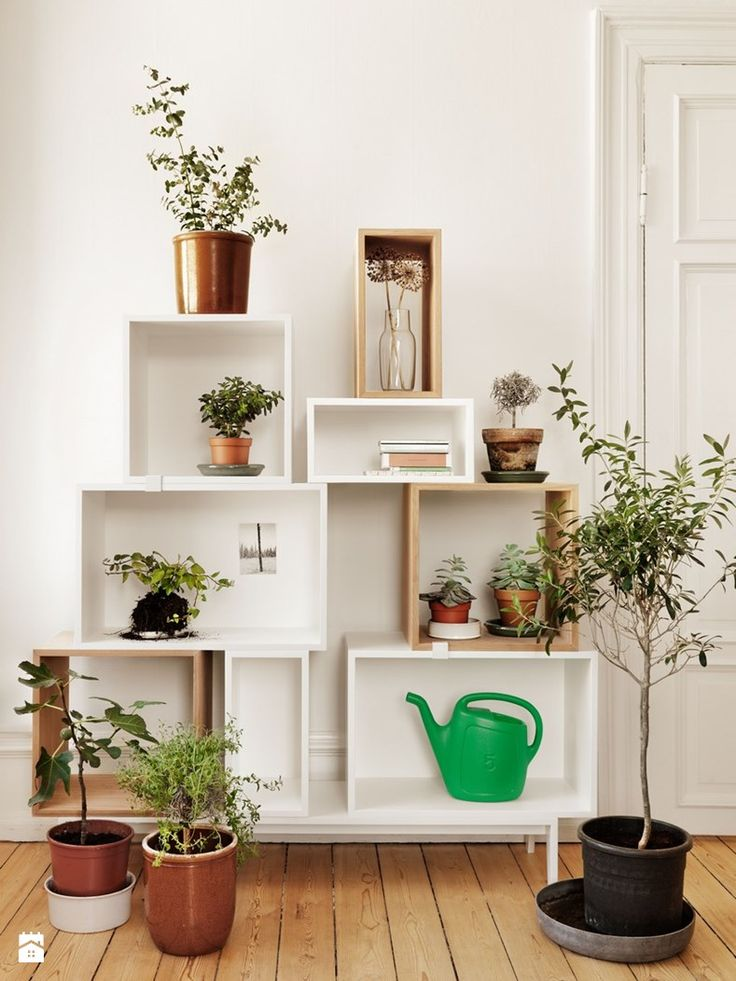 22 best ORYGINALNE MEBLE I DODATKI furniture and accessories