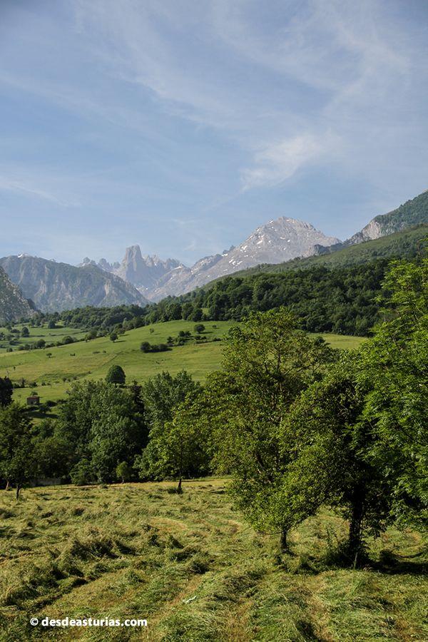 Picos de Europa #Asturias Picu Urriellu #Cabrales Turismo https://www.desdeasturias.com/picos-de-europa/