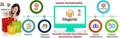 Magento has grown into the most popular open source platform for ecommerce since its launch in 2008. This shopping cart development platform is easy to use, manage and customize because of its essential features - site management, international support, order management, marketing tools, checkout, catalog management, shipping, payment, analytics and reporting - which are simply unmatched. At SSCSWORLD, we support ecommerce ventures across geographies with our Magento development services.
