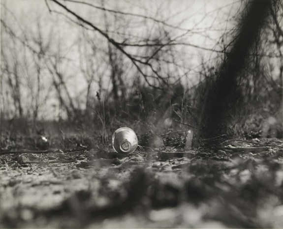 John Gossage, from the series The Pond, 1985, Smithsonian American Art Museum