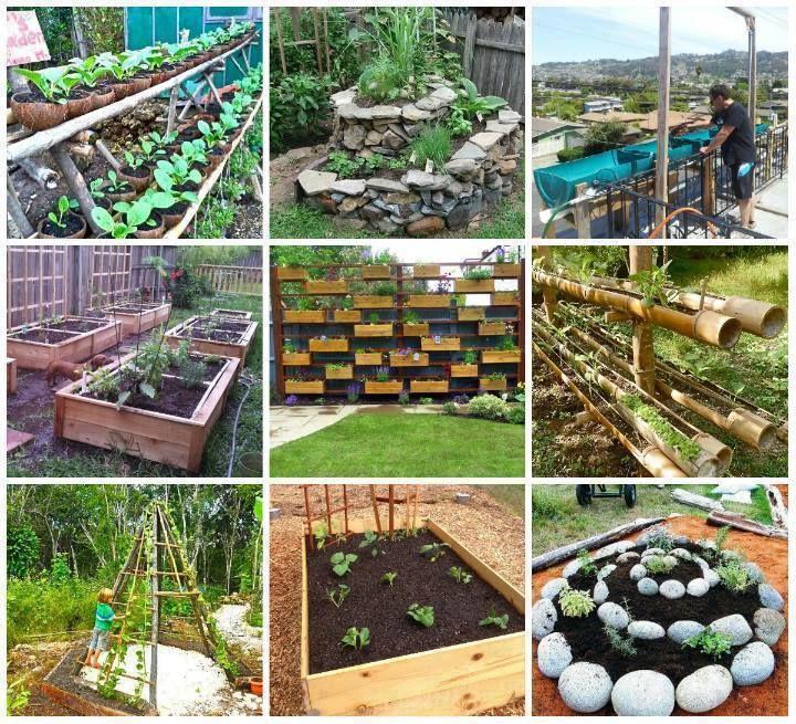 Les 25 meilleures id es de la cat gorie spirale d 39 herbe for Decoration jardin spirale