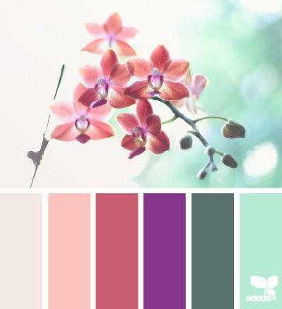 Flora Tones - http://design-seeds.com/index.php/home/entry/flora-tones38