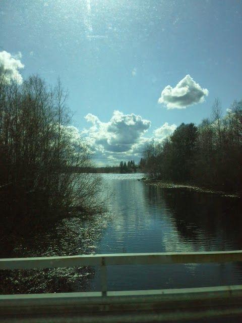 lyhyt matka luonto: Järvi luonto