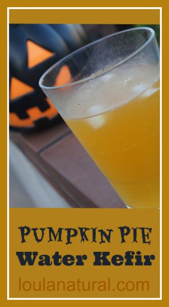 Pumpkin Pie Water Kefir is a great seasonal flavour that can help support the immune system during the change of season. It can also help to offset all the sugar of halloween and the holiday season. Drink it on its own, or slightly warm but also jazz it up with some kefir cocktails! Loula Natural #kefir #fermented #pumpkin #recipe #kids #halloween #fun #delicious #healthy #real food #maplesyrup #grainfree #dairyfree #nutfree #eggfree