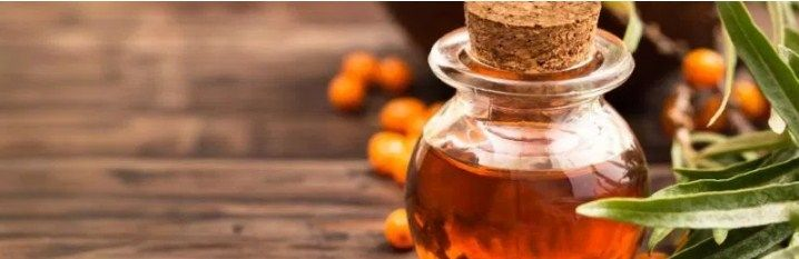 With every passing day, Sea Buckthorn oil is getting increasingly popular and people all around the world use it for many different reasons. This plant can be easily found in countries of Europe and Asia, the fruit of this plant is main root of its therapeutic qualities. That's why today on OiB, I will enlighten you with some crucial information regarding Sea Buckthorn Oil and how you can benefit from it to stay healthy and fit.