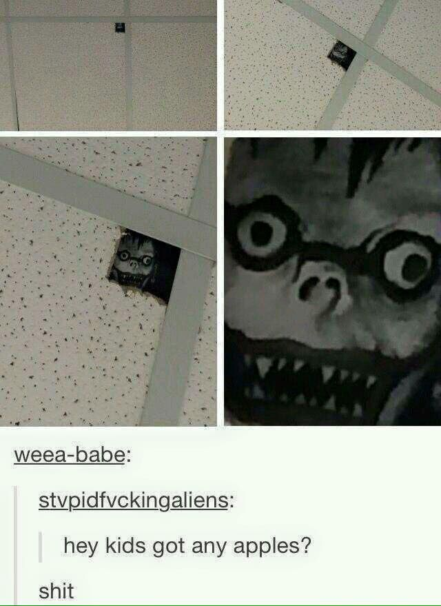 I actually have a hole in my wall this will totally work #anime
