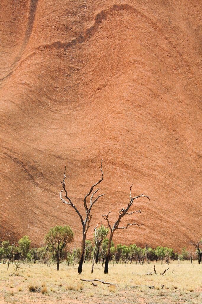 a description of uluru national park in the northern territory Uluru-kata tjuta national park tourism: best of uluru-kata tjuta national park south pacific australia northern territory red centre uluru-kata tjuta national park tourism 12,515 reviews and opinions uluru-kata tjuta national park, australia (photo provided by: northern territory) lodging (1) 8 reviews vacation.