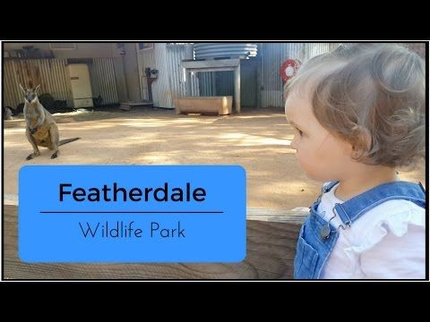 Watch this video on my channel   Featherdale Wildlife Park   The Watts #mummyvlogger  https://youtube.com/watch?v=-9rgHKMktMQ