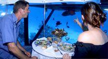 Explore the #Caribbean Sea on the submarine