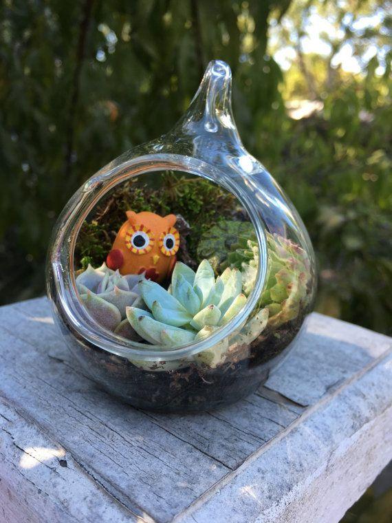 Adorable Owl Miniature Terrarium by EdenCondensed on Etsy
