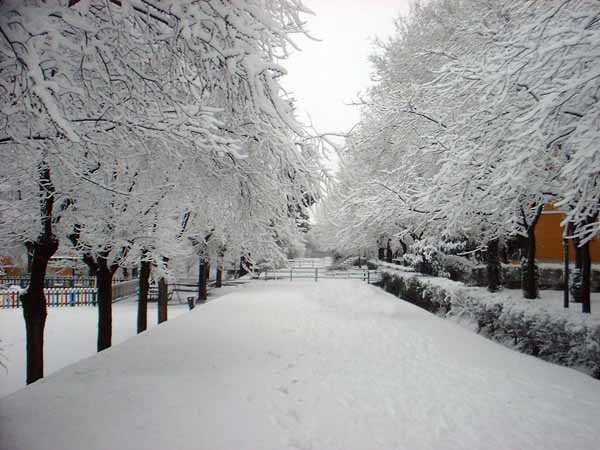Beautiful scenery of the city of Madrid snowy