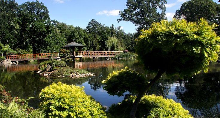 To chyba najcichsze miejsce we Wrocławiu, emanujące spokojem i łagodnością. Ogród Japoński urządził wybitny japonista, hrabia Fritz von Hochberg z Iłowej, któremu pomagał Mankichi Arai, ogrodnik z Tokio. Zielony zakątek stał się perłą Wystawy Sztuki Ogrodowej, odbywającej się przy okazji Wystawy Światowej w 1913 r. na terenach Parku Szczytnickiego. Po zakończeniu wystawy większość budowli ogrodu została zlikwidowana, lecz pozostał sam zarys założenia i roślinność. http://www.idodo.pl/
