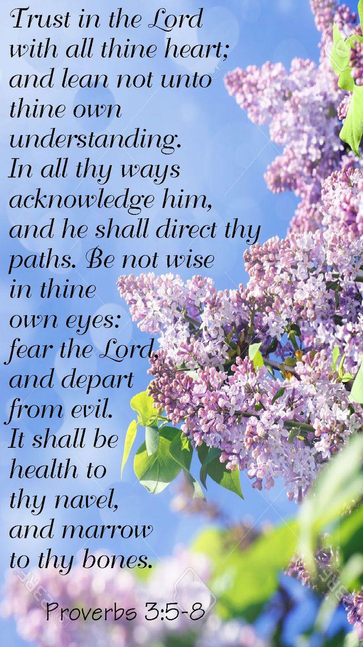 Proverbs 3:5-8 (1611 KJV !!!!)