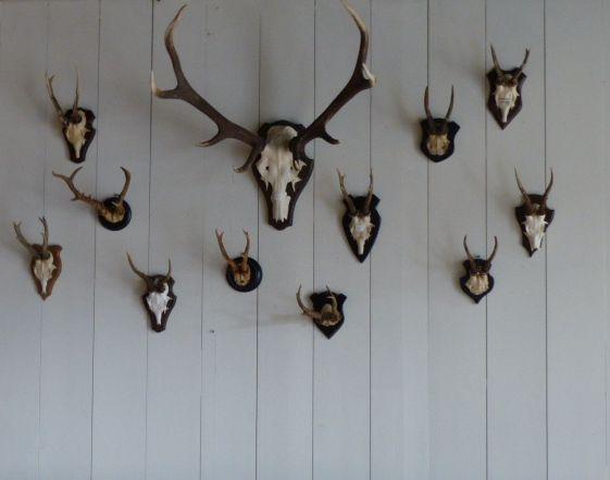 Hertengeweitjes gedurfd, maar zeker waard om boven een bank aan een wand te hangen.