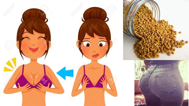 El té de fenogreco hace crecer tus glúteos y senos del tamaño que quieras, estos son los detalles