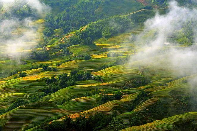 Heaven in Sapa  #Sapavietnam #Sapatours #Sapaholidays