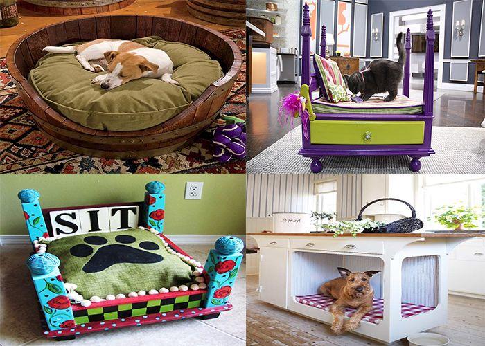 Забавные кроватки для домашних питомцев.  http://sanechka-11.blogspot.ru/2014/12/blog-post_10.html