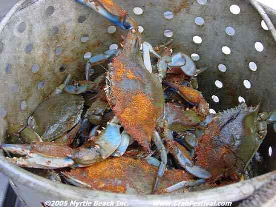Blue Crab String Lights : 39 best images about Little River on Pinterest Myrtle beach sc, Festivals and Vacation rentals