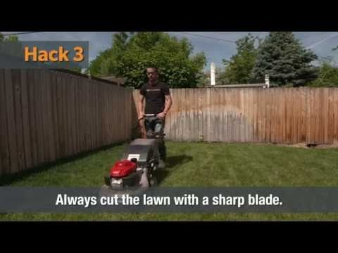 Lawn Care | Home Hacks - YouTube