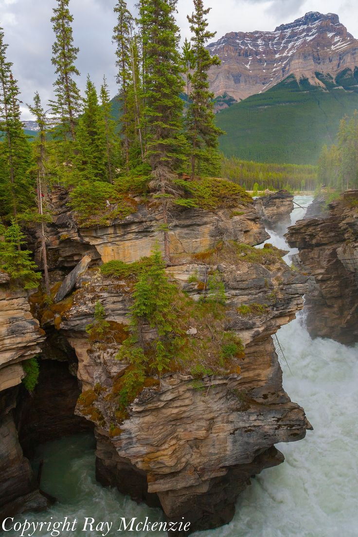 Athabasca Falls, Colombia Icefields Parkway, Alberta, Canada