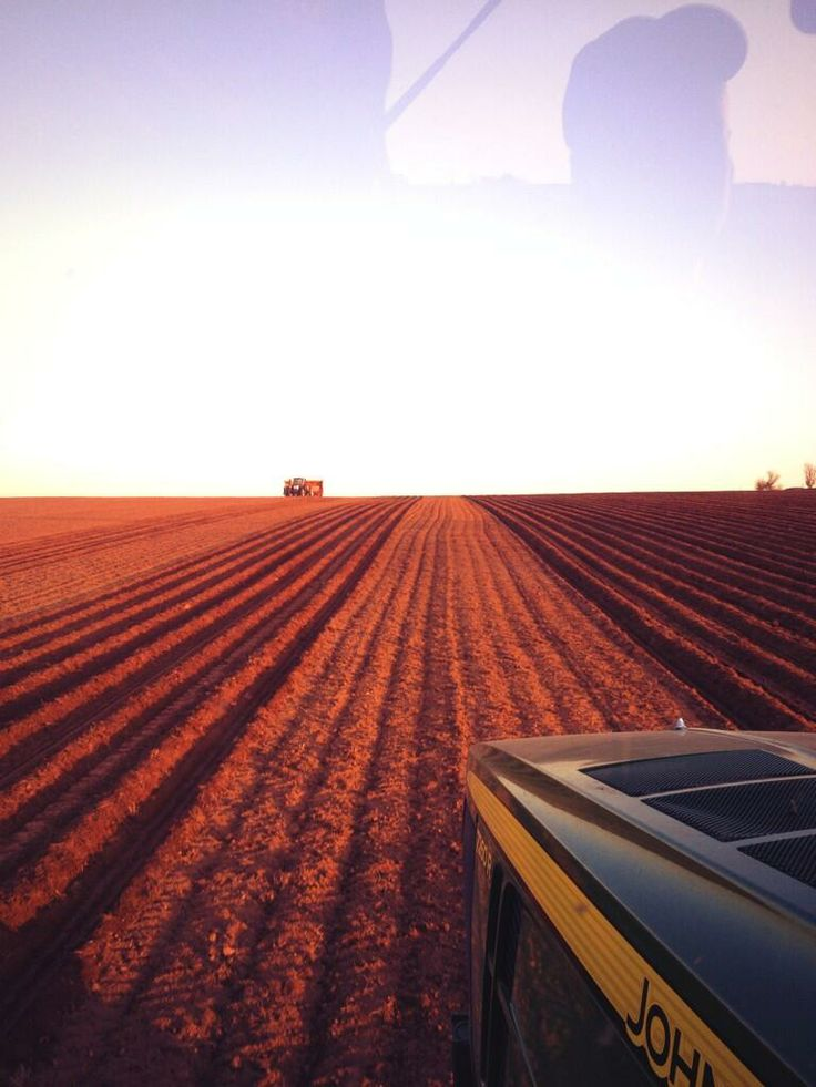 The sun can sure bring out the rust red! PEI Potatoes | Prince Edward Island | Beautiful Picture | Red Sand | Potatoes | It's in Our Nature