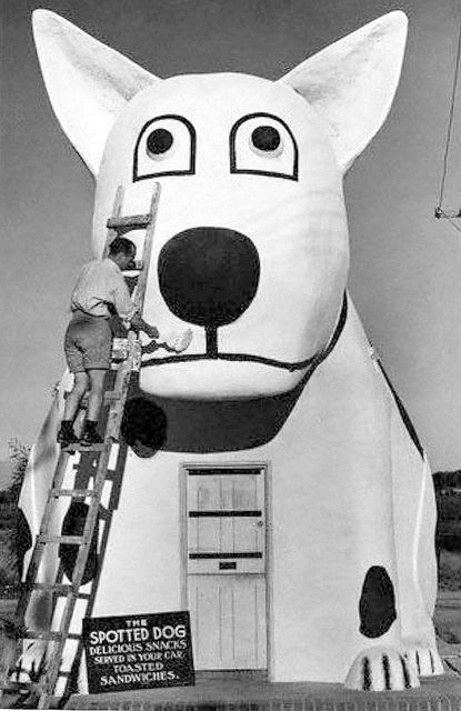 Spotted Dog Roadhouse, Retreat, Cape Town 1939 | Flickr - Photo Sharing!