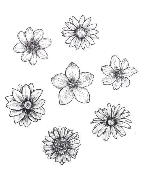 25 schöne Blumen Zeichnung Ideen & Inspiration – Brighter Craft #tattoos