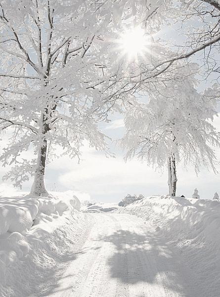 Schnee macht glücklich! Endlich wieder Skifahren und Snowboarden                                                                                                                                                                                 Mehr