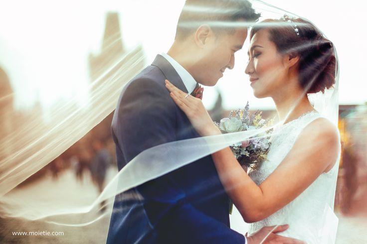 Our Perfect couple Connie and Fodo from #HK. #moietie #prague #charlesbridge #prewedding #photographerprague #bride #groom #wedding #weddingphotographer #weddingphoto #hkwedding #hkbeauty #布拉格 #布拉格婚纱摄影 #婚礼 #新娘 #蜜月 #海外婚紗攝影 #婚纱摄影