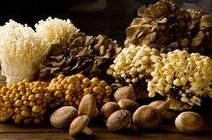 ソレダメ!10/26 きのこレシピ!「エリンギの黄金ステーキ」中華料理でアワビの食感! | 興味しんしん