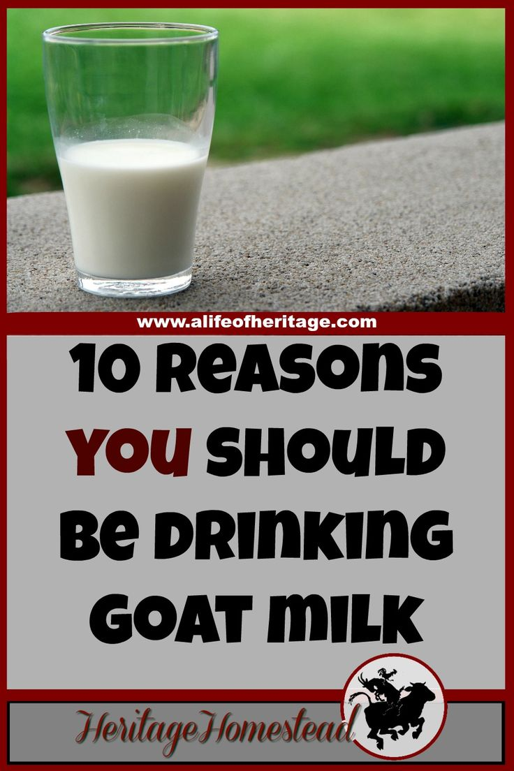 Goat Milk | Drinking Milk | Homesteading | The Benefits of Goat Milk are Astounding. Truly. These 10 reasons are why you should look into drinking goat milk. Your body will thank you!