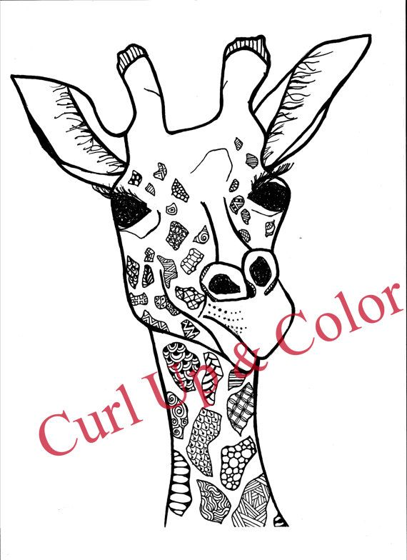 Adult Coloring Page - Giraffe - Instant Download ...