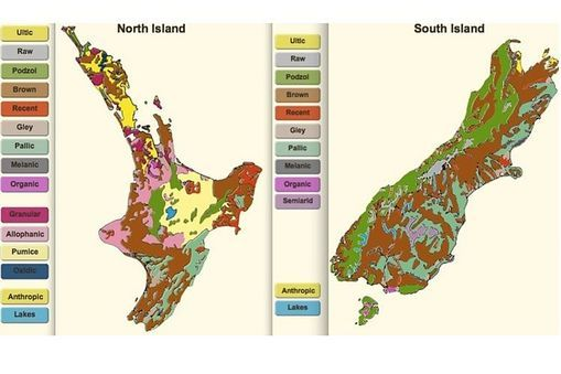 New Zealand soils map - Soil classification begins with a soil order. Soil orders are further divided into groups, subgroups and families. This map displays New Zealand's soil orders.