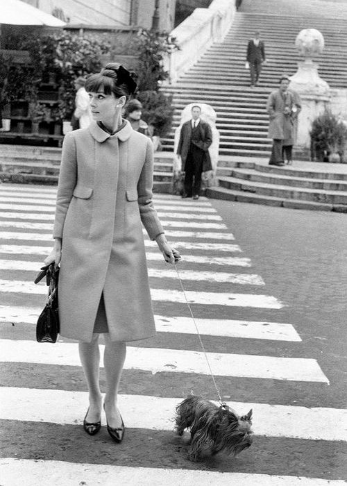 Audrey Hepburn walking her dog at Piazza di Spagna, Rome, 1964