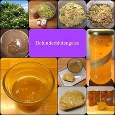 Holunder-Woche! So schmeckt der Sommer: Omas Holunderblütengelee – unvergleichlich aromatisch | Das Leben ist zu kurz, um schlechten Wein zu trinken!