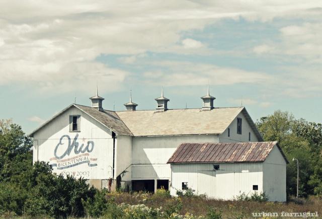 Ohio...: Farms Barns, Beautiful Barns, Ohio Barns, Columbus Ohio The Barns, Farms Life, Beautiful Ohio, White Ohio, Ohio Farms, Ohio State