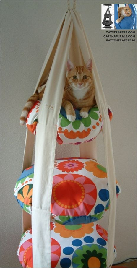 A Cat Trapeze - looks like good times for the cat; a fun diy ...........click here to find out more http://googydog.com