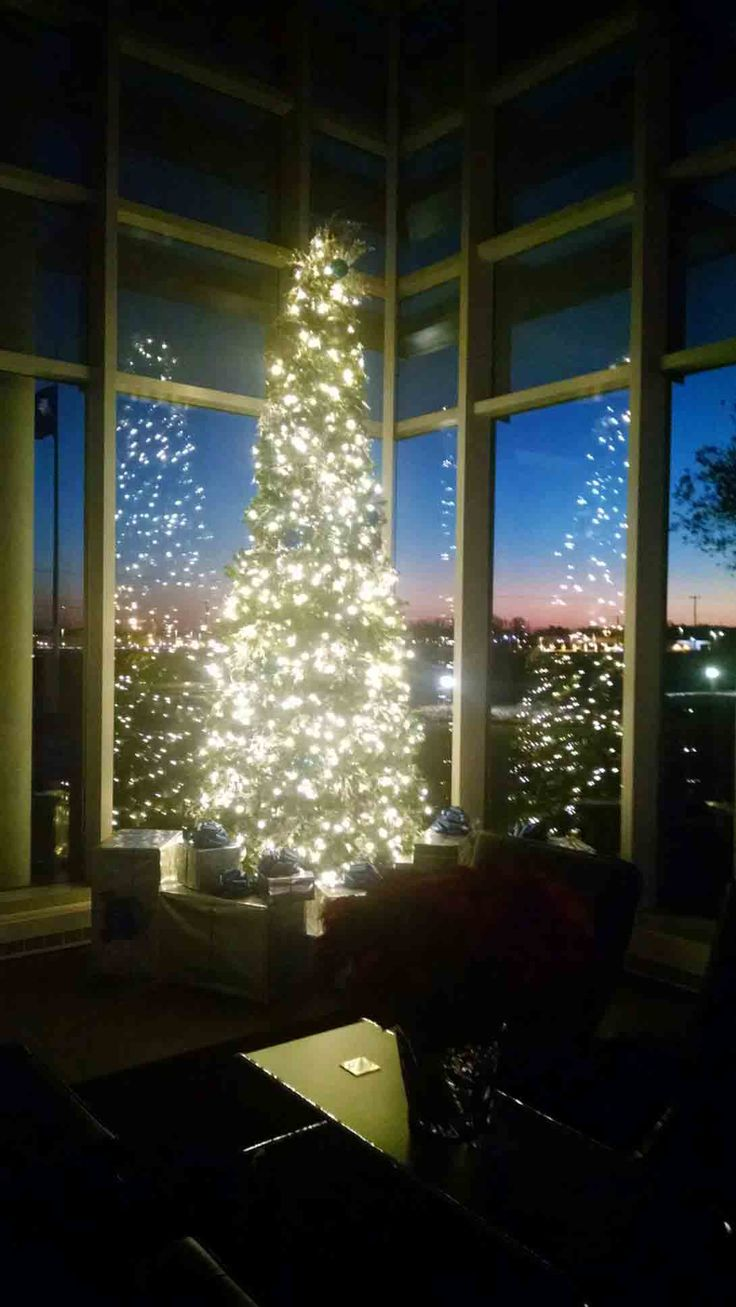 Beautiful shot with a wonderful #SouthCarolinaSunset through the windows! www.interior-plantscapes.com