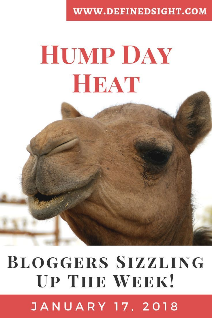 Hump Day Heat! Highlights the amazing work in the finance & blogging community to get you through the week. Check it out! You may be listed! #LifeStyle #Blogging #Finance #Savings #Budget #PersonalDevelopment #ProfessionalDevelopment #RichLifeStyle #HowToBeHappy #BeMoreChill #DefinedSight