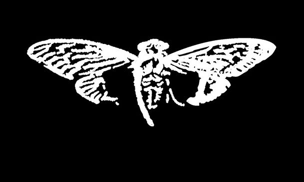 Cicada 3301 is the name given to an unknown group that burst forth on the internet early in 2012. They allegedly posted an image that held a secret message that urged those interested to find it. This message spurred would be solvers to collaborate all across the globe. As of yet no information on the groups has been found. Those who have claimed to get to the end of the tests have not been forthcoming with any information on the group.