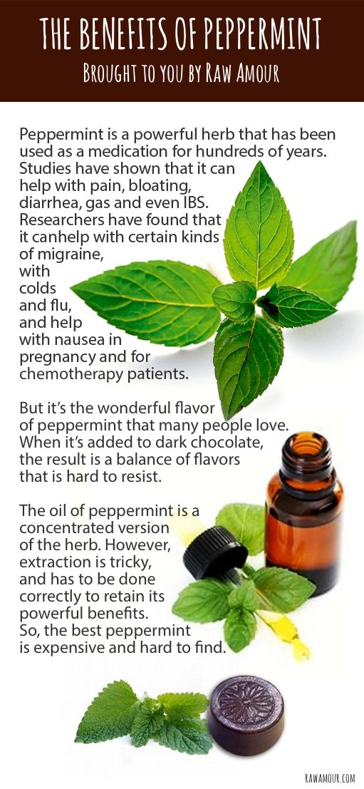 Peppermint and raw chocolate - taste and health in one package