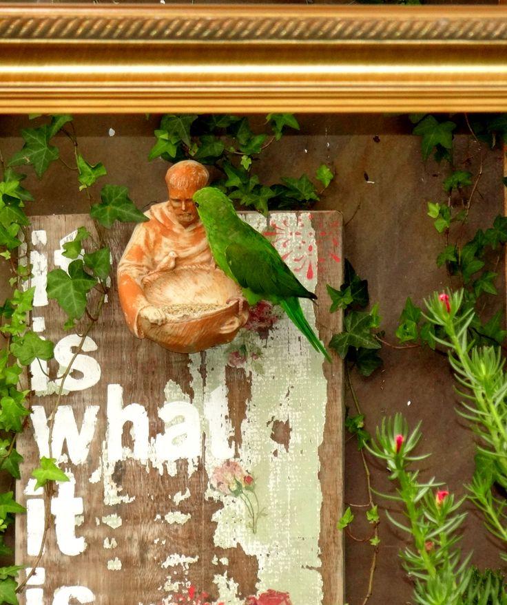 COMEDOURO SÂO FRANCISCO + PLACA DE MADEIRA ( It is what it is) .COD: SFMAD São Francisco em resina pigmentada com acabamento de pintura, medida 11cm diametro X 14,5cm de altura.  Placa de Madeira Rustica Pintada envelhecida 29cm X 40cm