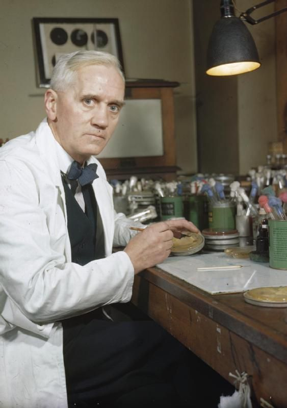 Sir Alexander Fleming (6 August 1881 – 11 March 1955) was a Scottish biologist, pharmacologist and botanist. His best-known discoveries are the enzyme lysozyme in 1923 and the antibiotic substance penicillin from the mould Penicillium notatum in 1928, for which he shared the Nobel Prize in Physiology or Medicine in 1945 with Howard Florey and Ernst Boris Chain.