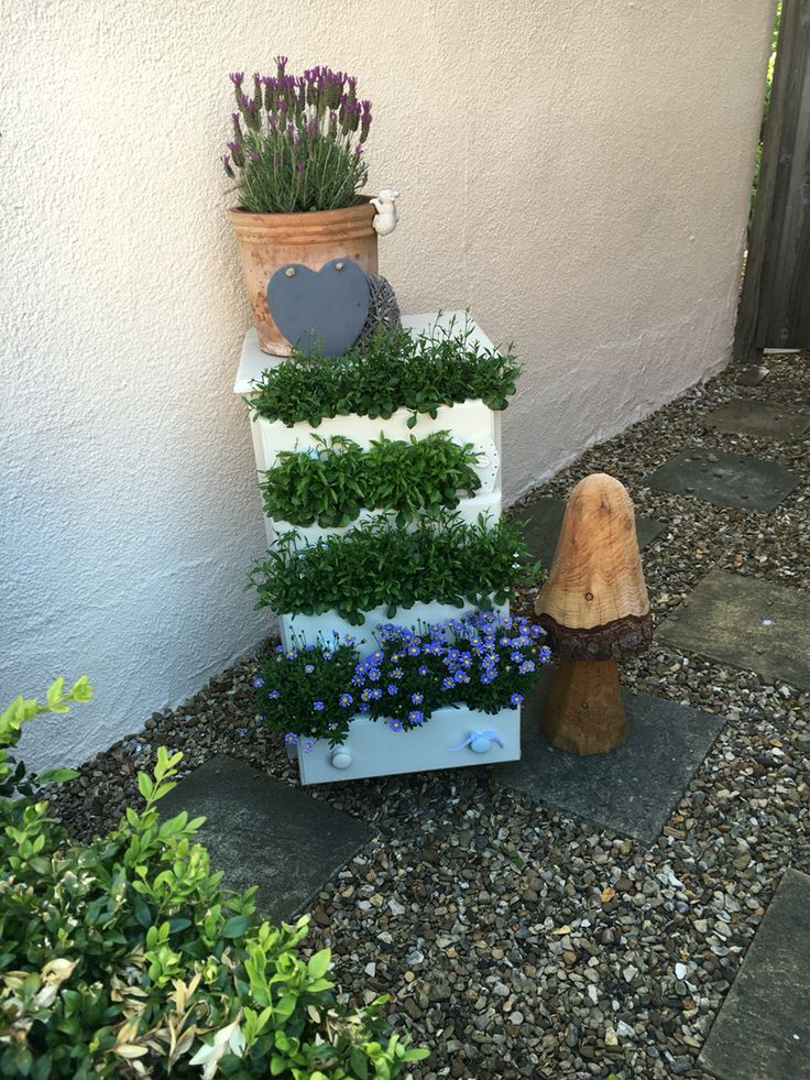 #garden #gardendecor #drawers #flowers