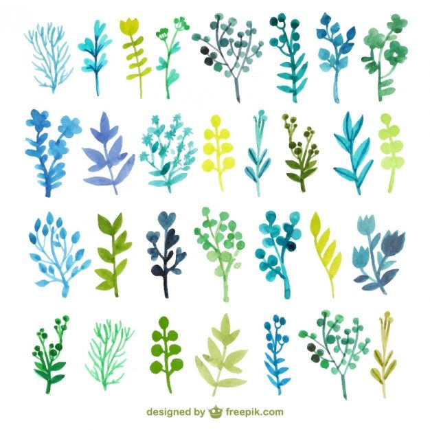 Folhas de outono Watercolor