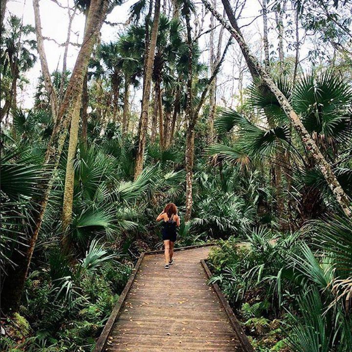 <b>Wekiwa Springs Hiking Trail</b> <br>1800 Wekiwa Circle, Apopka, FL 32712 <br>This 10.2-mile trail is open to hikers, dogs, off-road cyclists and equestrians with a state park entrance fee. Wekiwa Springs is one of Florida's busiest and most popular state parks, so be prepared to meet some other hikers along the way.  <br> <br>Photo via maximillian_ortega/Instagram