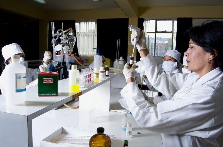 Facultad de Ciencias Biológicas de la Universidad Nacional del Altiplano Puno.  Taller de Práctica en Laboratorio. Foto: Marzo 2014