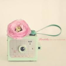 Image result for pastel colored cameras