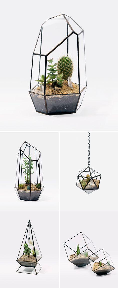 gem-shaped terrariums! #plants