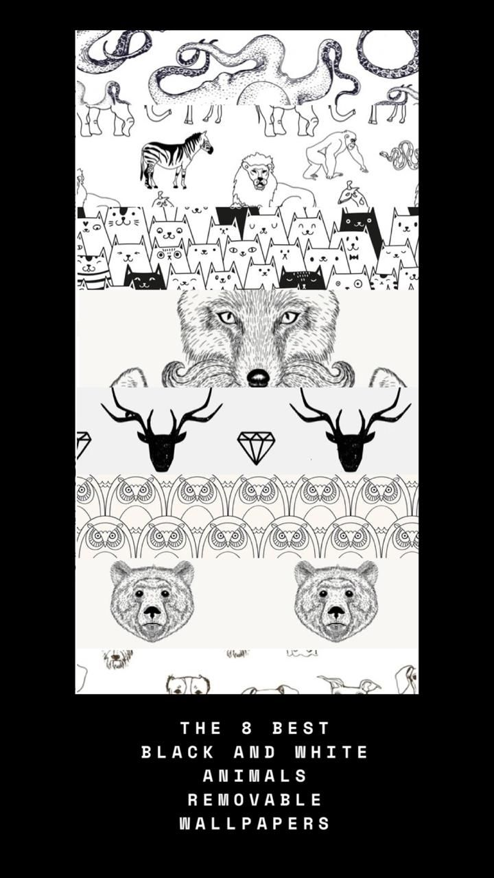 The 8 Best Black And White Animals Removable Wallpaper Removable Wallpaper White Wallpaper Black And White
